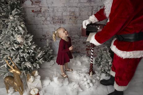 Christmas Mini